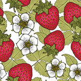 Seamless pattern with strawberries. Graphic stylized drawing. Royalty Free Stock Photography