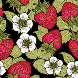 Seamless pattern with strawberries. Graphic stylized drawing. Royalty Free Stock Images