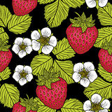 Seamless pattern with strawberries. Graphic stylized drawing. Royalty Free Stock Photo