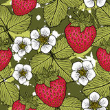 Seamless pattern with strawberries. Graphic stylized drawing. Stock Image