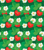 Seamless pattern with Strawberries in heart shapes Stock Photography