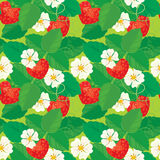 Seamless pattern with Strawberries in heart shapes. With flowers and leaves Royalty Free Stock Images