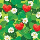 Seamless pattern. Strawberries in heart shapes wit Royalty Free Stock Image