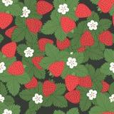 Seamless pattern strawberries Stock Photo