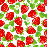 Seamless pattern with strawberries. Seamless pattern with strawberries, leaves and flowers. Vector illustration Royalty Free Stock Images