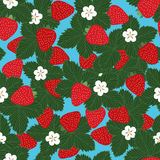 Seamless pattern of strawberries. With leaves and flowers - vector illustration Stock Image