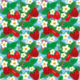 Seamless pattern with strawberries peloy Stock Photos