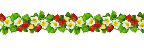 Seamless pattern with strawbwrries flowers, berries and leaves Royalty Free Stock Photos