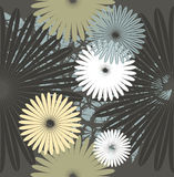 Seamless pattern with stylish chamomile flowers. Decorative template for your designs Stock Photo