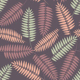 Seamless pattern with stylized fern leaves. Violet seamless patterns with leaves of fern in pastel colors Royalty Free Stock Photos