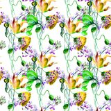 Seamless pattern with Stylized flowers. Watercolor illustration, Hand painted drawing Royalty Free Stock Image