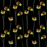 Seamless pattern with Stylized Gerber flowers Royalty Free Stock Image