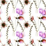 Seamless pattern with Stylized Gerber and Peony flowers. Watercolor illustration Stock Images