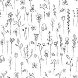 Seamless pattern with stylized herbs and plants. Black and white silhouette. Stock Images