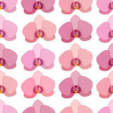 Seamless pattern with stylized orchids. Royalty Free Stock Photography