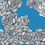 Seamless pattern with succulent on the blue background. Graphics. Hand drawn royalty free illustration