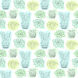Seamless pattern with succulent flowers in pots. Vector floral background for textile design. Seamless pattern with succulent flowers in pots. Vector floral royalty free illustration