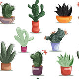 Seamless pattern with succulent plants and cacti in pots. Stock Image
