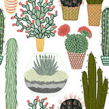 Seamless pattern with succulent plants and cactuses in pots. Vector botanical graphic set. With cute florals royalty free illustration