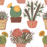 Seamless pattern with succulent plants and cactuses in pots. Royalty Free Stock Images