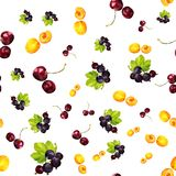Seamless pattern with summer berries of apricot, currant and cherry vector illustration
