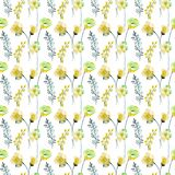 Seamless pattern with summer flowers Royalty Free Stock Photo
