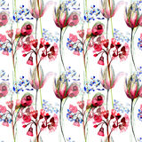 Seamless pattern with Summer flowers Royalty Free Stock Photography