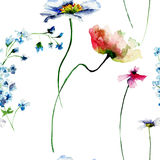 Seamless pattern with summer flowers Stock Photos