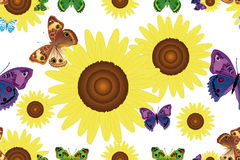 Seamless pattern with sunflowers and butterflies Stock Photos