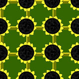 Seamless pattern of sunflowers. On a green background Vector Illustration