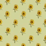 Seamless pattern sunflowers green. Vector Royalty Free Stock Photos