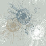 Seamless pattern of sunflowers Stock Photo