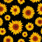 Seamless pattern of sunflowers Stock Images