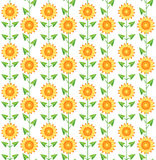 Seamless pattern sunflowers on white. Royalty Free Stock Images