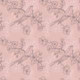 Seamless pattern with swallow sitting on blooming tree branches Royalty Free Stock Image