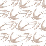 Seamless pattern with Swallows in the clouds. Stock Photos