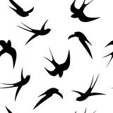 Seamless pattern. Swallows on a white background. Black swallows on a white background stock illustration