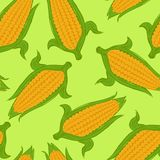 Seamless pattern with sweet corn on green background. royalty free illustration