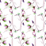 Seamless pattern with Sweet pea flowers. Watercolor illustration Stock Images
