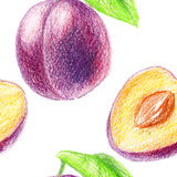 Seamless pattern with sweet plum. Royalty Free Stock Image
