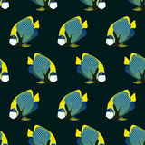 Seamless pattern from swimming fishes. On dark background. Emperor angelfish. Pomacanthus imperator. Coral fish Stock Photos