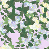 Seamless pattern with syringa. Royalty Free Stock Images