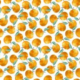 Seamless pattern of tangerines with leaves isolated on white background. Tropical pattern. Watercolor illustration. vector illustration