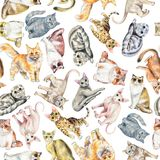 Watercolor seamless pattern with ten different breeds of cats vector illustration