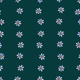 Seamless pattern of tender blue chamomiles arranged in wavy bands Stock Photos