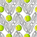 Seamless pattern with tennis, rackets, ball. Hand drawn, drawing paper, design background, backdrop. Sport inventory for. Vector illustration of seamless pattern Royalty Free Stock Photography