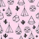 Seamless pattern. Terrarium and cactus. Vector. Concept of black cactuses with terrariums on pink background. Stock Photos