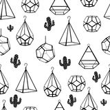 Seamless pattern. Terrarium and cactus. Vector. Concept of black cactuses with terrariums on white background. Stock Photos