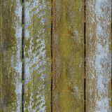 Seamless pattern of textured wooden plank wall with moss. Seamless pattern of very old wooden plank wall with moss for design and matte painting Royalty Free Stock Photo