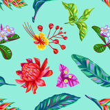 Seamless pattern with Thailand flowers. Tropical multicolor plants, leaves and buds Royalty Free Stock Photo
